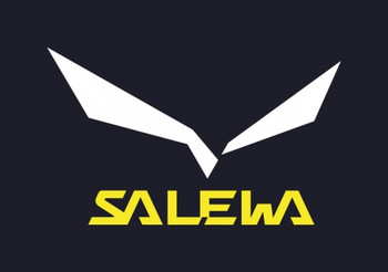 Sa2_2